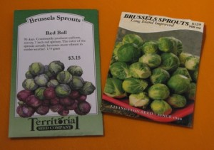 Brussels Sprouts that I am growing in 2015