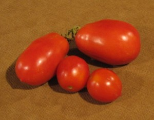 Roma Tomatoes (see the two on top)