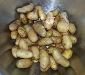 Small Fingerling Harvest